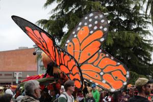 kinetic butterfly
