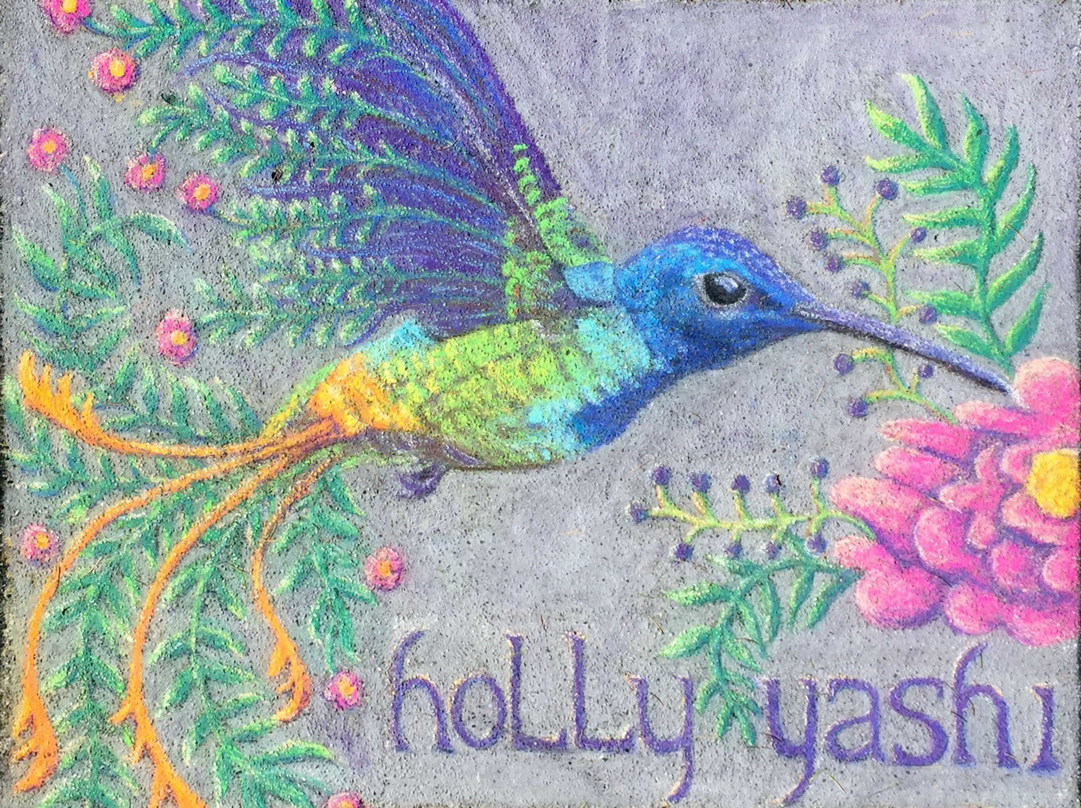 Holly Yashi hummingbird pastel