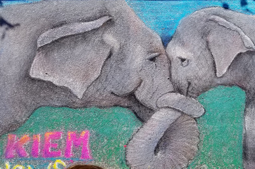 Pastel elphants